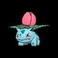 Ivysaur Buddy Dystans