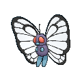 Butterfree Buddy Dystans