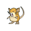 Raticate Buddy Dystans