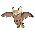 Noctowl Buddy Dystans