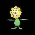 Sunflora Buddy Dystans